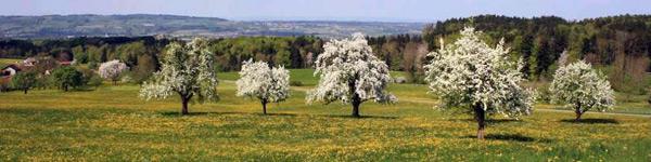Thurgau Sommer in Tälern und Höhen