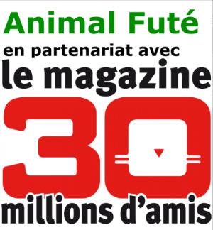 Animal Futé est partenaire de la revue 30 Millions d'Amis