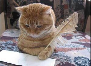 Auriez-vous envie d'écrire le récit de votre expérience Animal Futé ?