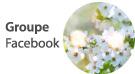 Groupe Facebook Formations, événements, offres et actualités / references-bien-etre.ch