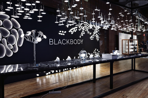 Blackbody wanted design 2016